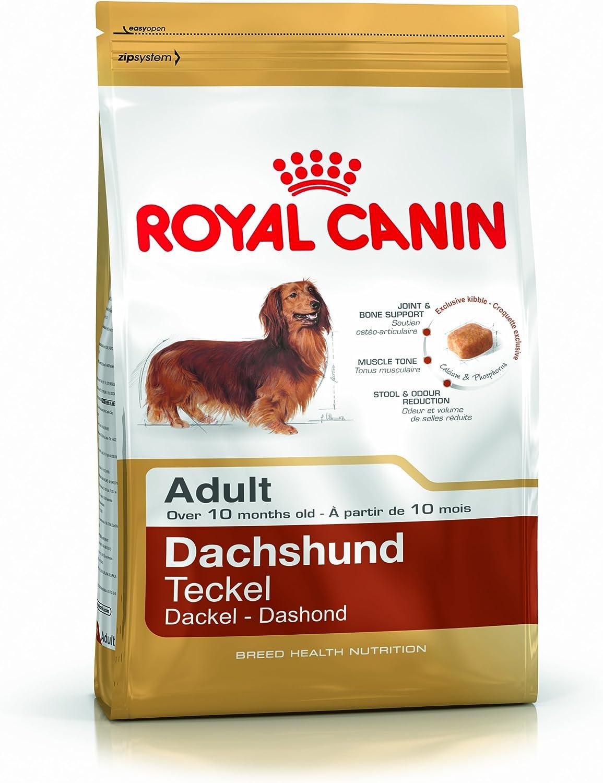 ROYAL CANIN Dachshund Adult 28-7500 gr