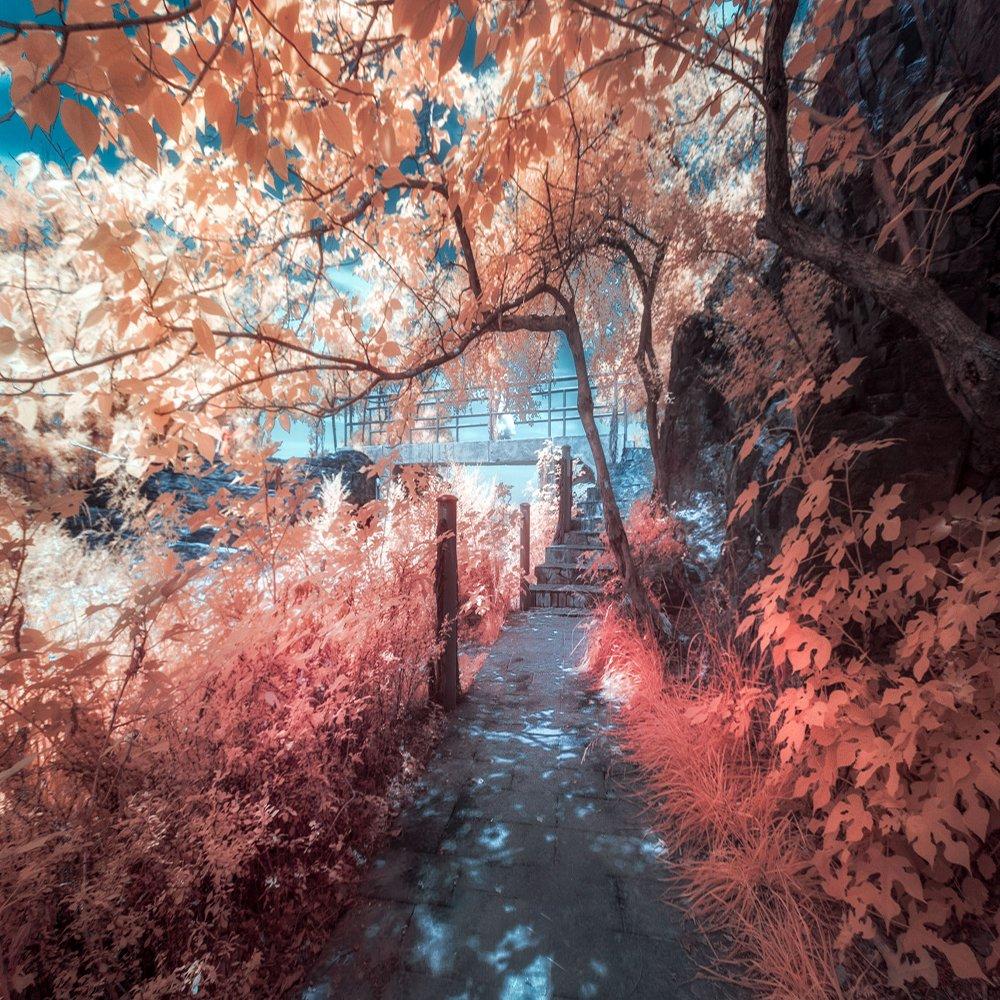 Fotga 58mm Infrared Infra-red IR Pass X-Ray Lens Filter 1000nm by FOTGA