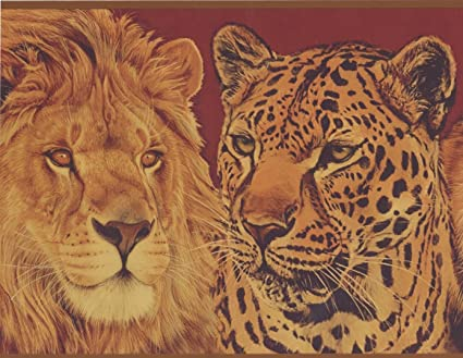 Wallpaper Of Lion And Tiger