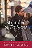 Stranded in the Snow (Holiday Acres Book 2)