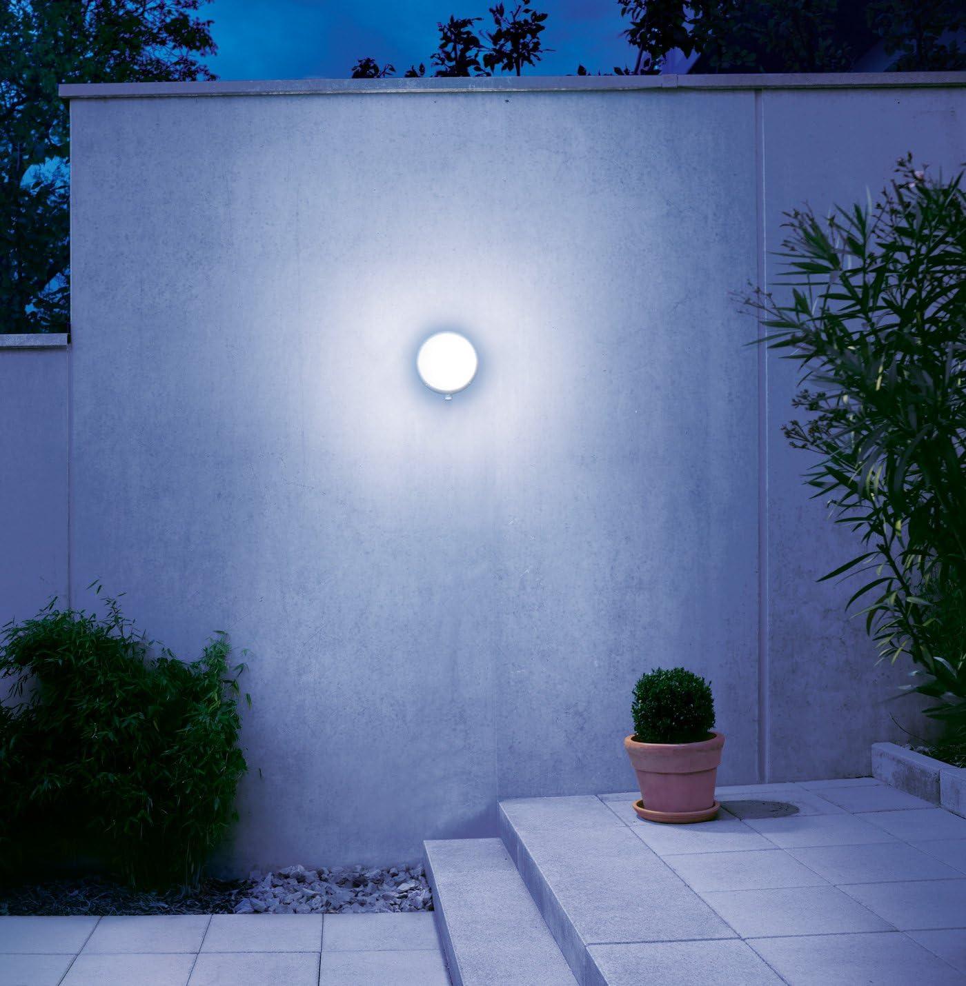 Steinel ST 670115 Lampada per Esterni con Sensore L 330 S, Bianco, Blanco: Amazon.es: Hogar