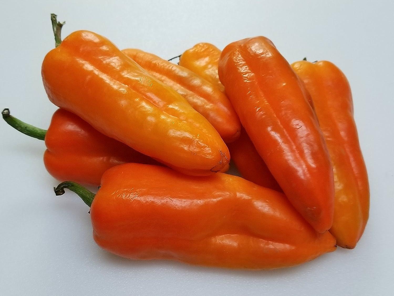 Anaheim Orange Pepper 10+ Seeds