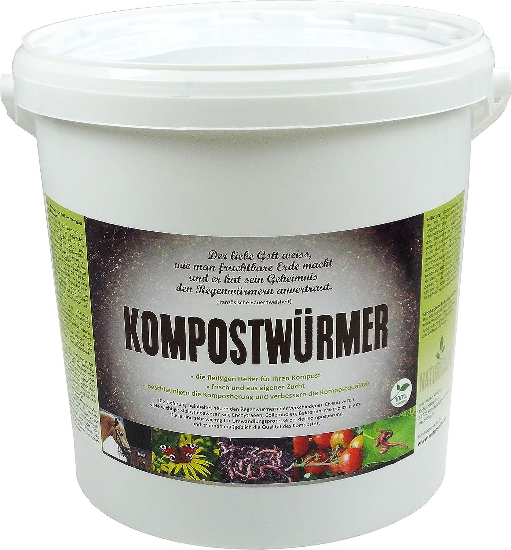 Compost gusanos - de compostaje Starter lumbricidae ...