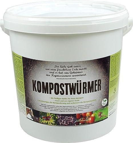Lombrices de tierra para hacer compost. Lombrices para