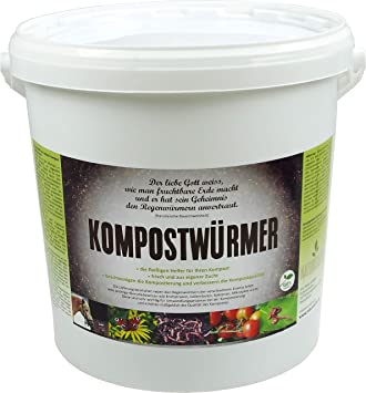 Compost gusanos - de compostaje Starter lumbricidae - eisenia Compost Gusano Moorland activo - Gusanos para