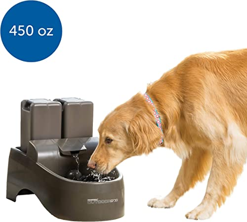 PetSafe-Drinkwell-Indoor/Outdoor-Dog-Fountain