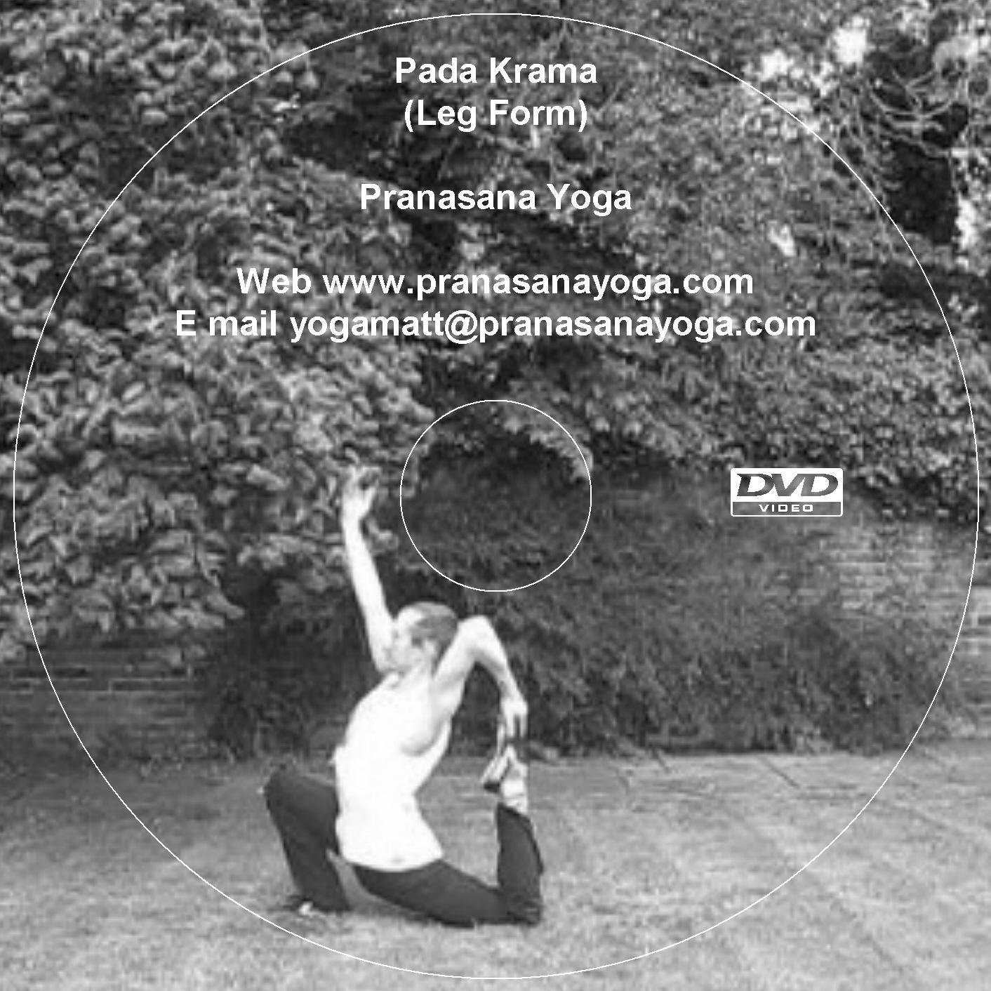 Pada Krama - Standing Yoga Postures DVD Sequence for ...