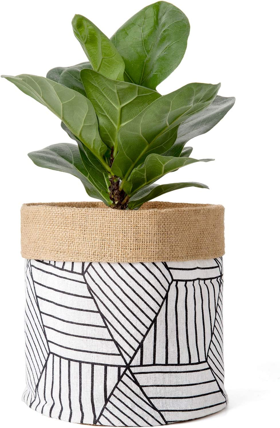 Mkono Plant Basket Cotton Linen Modern Table Desktop Indoor Planter Up to 10 Inch Pot Double-Faced Flower Pot Cover with Jute Lining for Storage Organizer Home Decor, 8 x 7.5