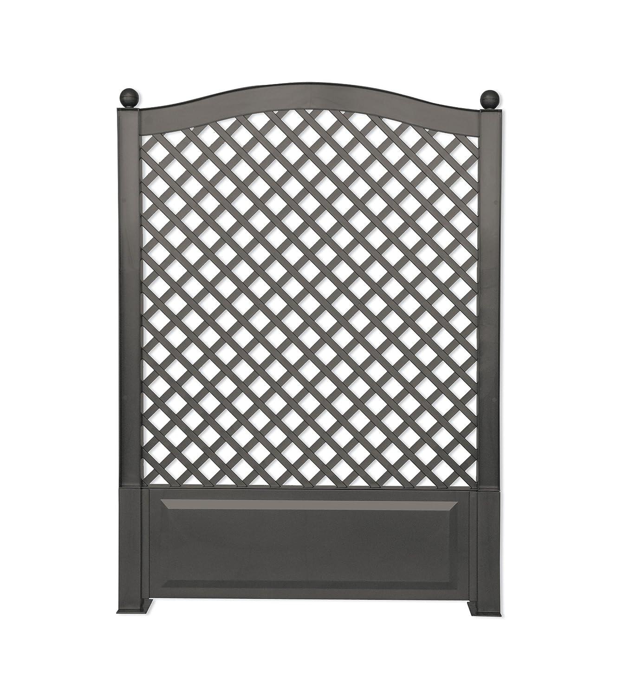 elegant spalierb ume als sichtschutz einzigartige ideen zum sichtschutz. Black Bedroom Furniture Sets. Home Design Ideas