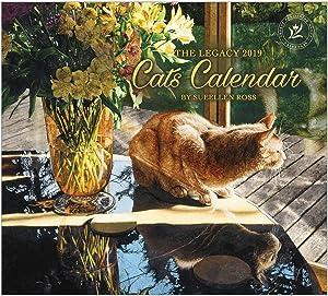 2019 Wall Calendar, Cats Calendar