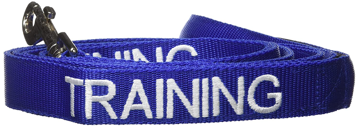 1.2m TRAINING Blue Colour Coded 60cm 1.2m 1.8m Luxury Neoprene Padded Handle Dog Leads PREVENTS Accidents By Warning Others Of Your Dog In Advance Dog In Training//Do Not Disturb