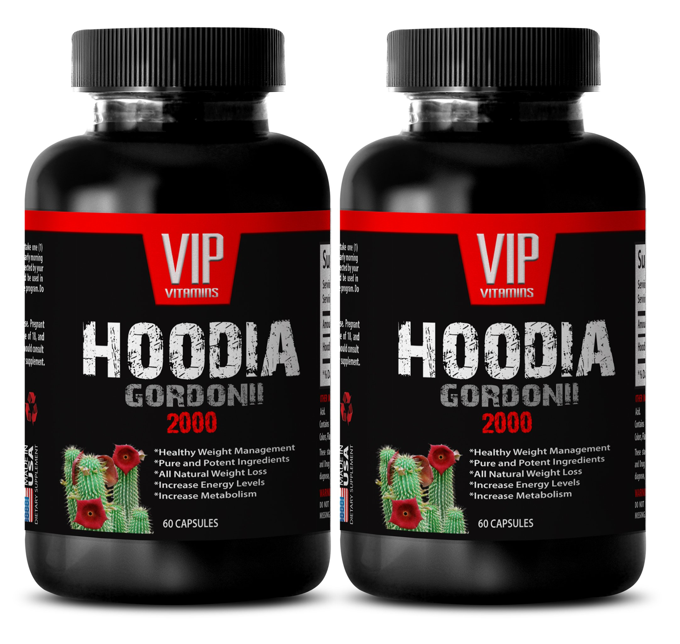 Fat loss energy pills - HOODIA GORDONII EXTRACT 2000 - Hoodia p57 slimming - 2 Bottles 120 Tablets by VIP Supplements (Image #1)