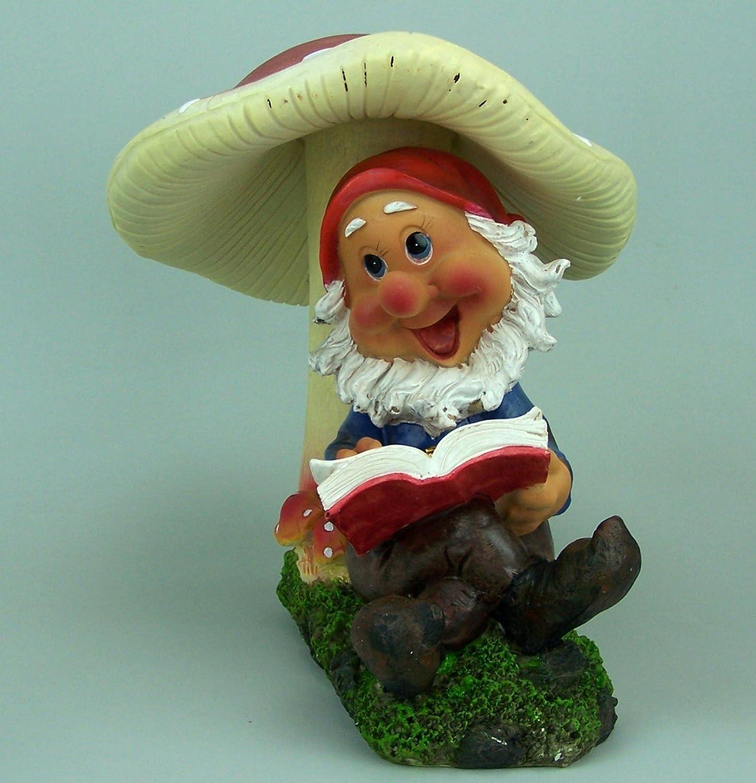 Enano, Enano de jardín. Poliresina. Gnomo de jardín con libro de setas. 25 x 26 x 20 cm. Multicolor: Amazon.es: Juguetes y juegos