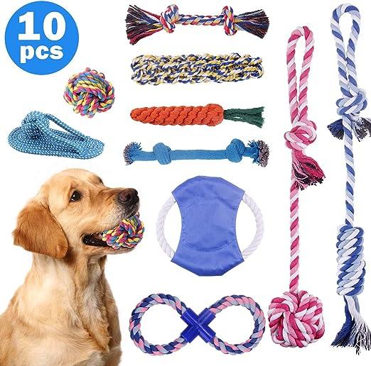 Minterest 10 Piezas Kit de Juguetes para Perros, Cuerdas Reforzado ...