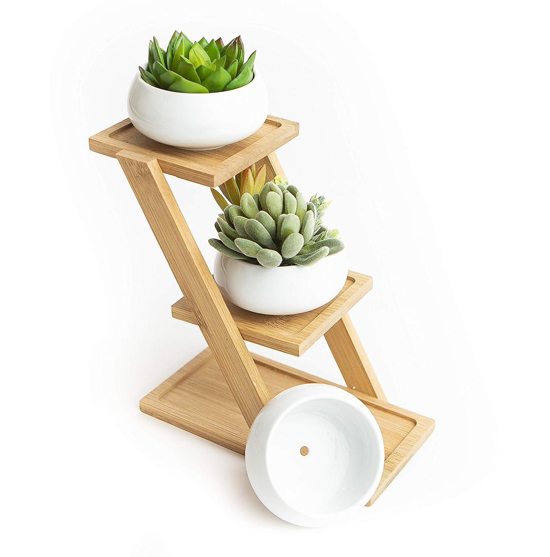 Ceramic Succulent Planter, Set of 3 Succulent Pots on Tiered Bamboo Indoor Planter