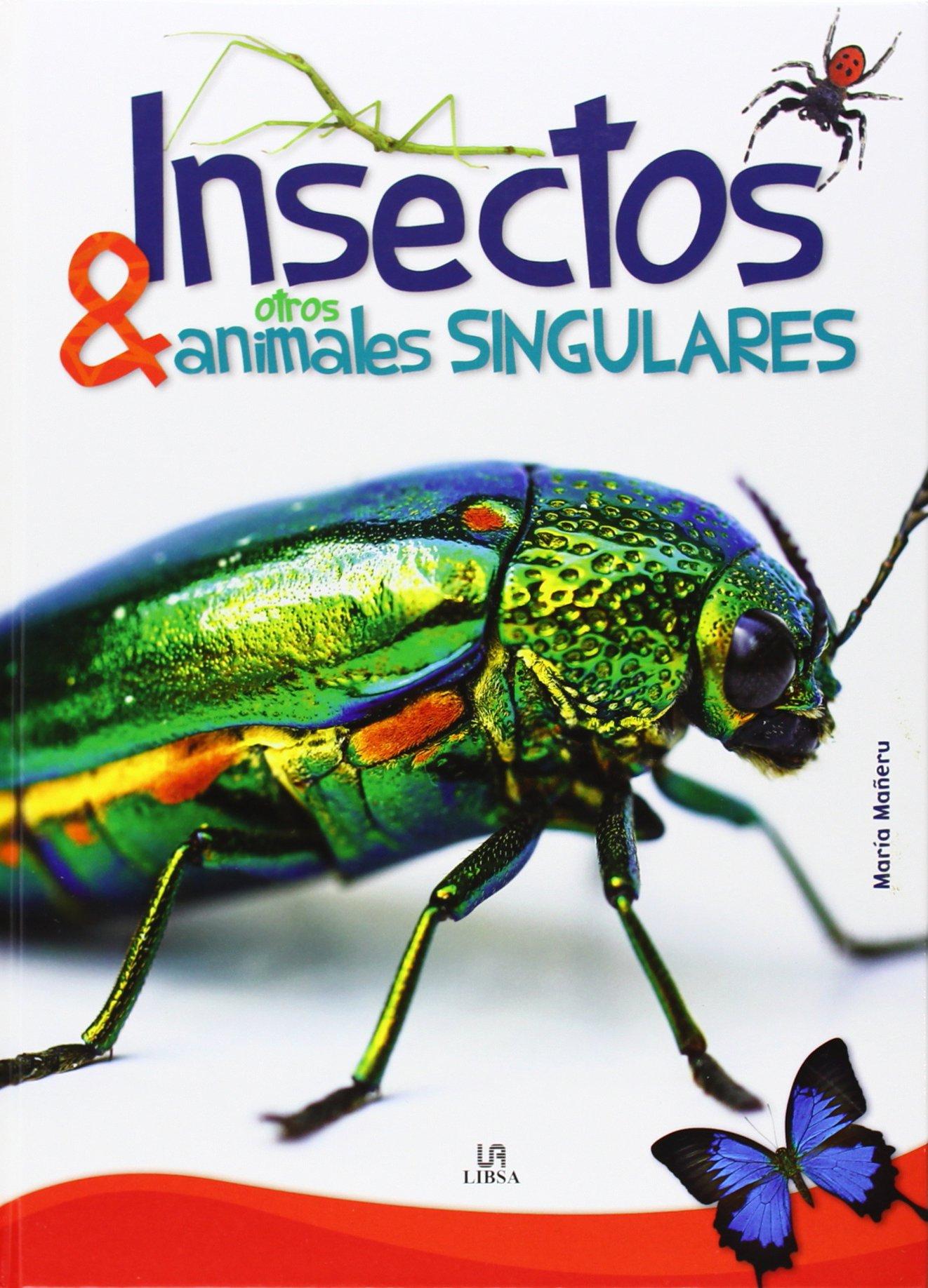 Insectos y Otros Animales Singulares (Reino Animal): Amazon.es: Mañeru, María: Libros