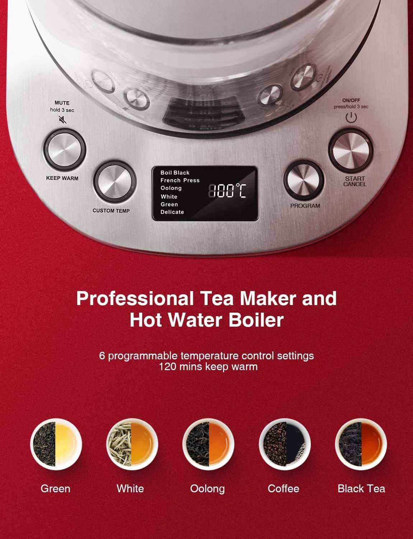 calentador de t/é con pantalla LCD de control de temperatura Decen Hervidor el/éctrico calentador de t/é de agua caliente tetera el/éctrica de acero inoxidable infusor de t/é extra/íble 1,7 L 1200 W