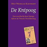 De knipoog: Een zwerftocht door Europa tijdens de Tweede Wereldoorlog