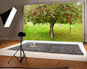 Laeacco 7x5FT Vinyl Backdrop Photography Background Apple Trees Orchard Garden Fruit Harvest Outdoor Fresh Scenery Natural Photo Background Backdrop Photo Studio Props Children Baby Kids Photo Shoot