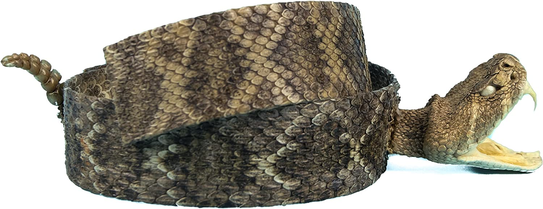 Genuine Rattlesnake Head Hat Pin