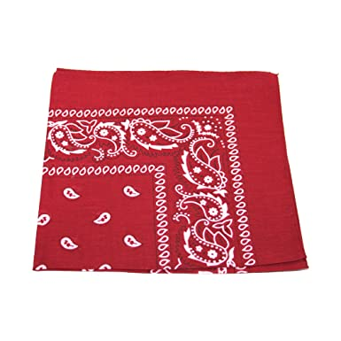 Paisley Bandana Bandanna Headwear//Hair Band Scarf Neck Wrist Wrap Band Headtie