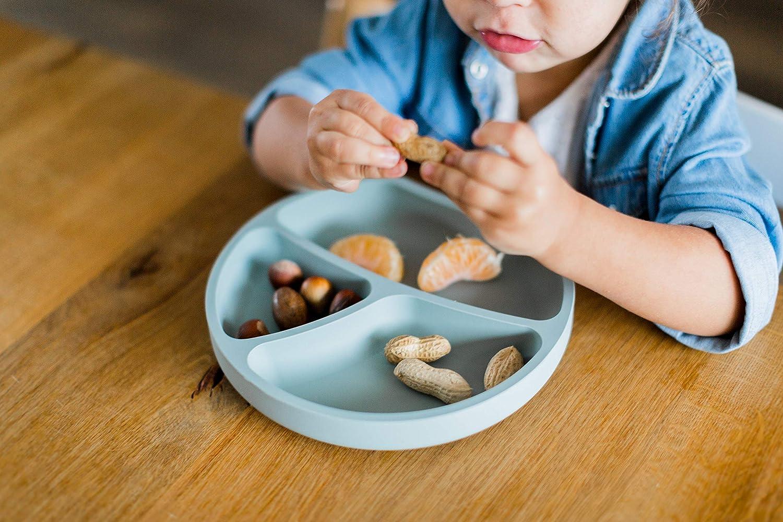 Aquamarine Kindsgut Plate Suction Dish