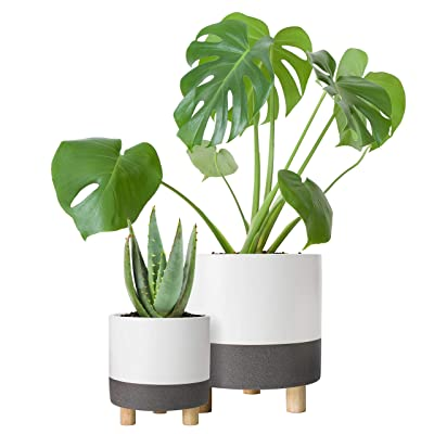 Set of 2 Plant Pots, 4 Inch & 6 Inch, Ceramic Planter Pot with Drainage Hole and Mesh Net, Matte White/Speckled Grey : Garden & Outdoor