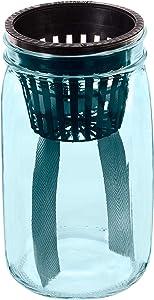Evergreen Garden Self-Wicking Glass Mason Jar Planters, Set of 4