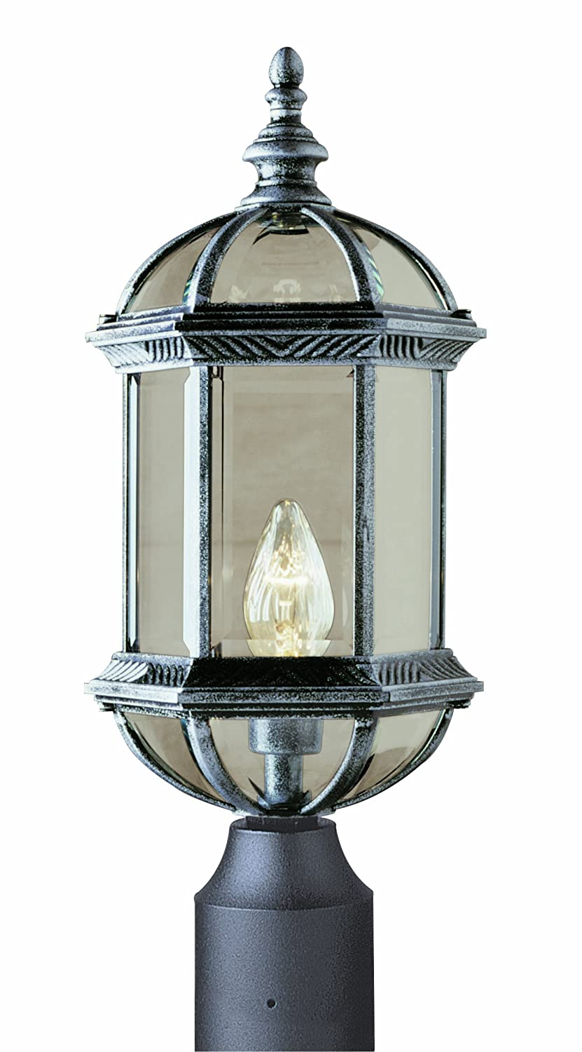 Trans Globe Lighting 4186 BK 19-3/4-Inch 1-Light Outdoor Post Top Lantern, Black