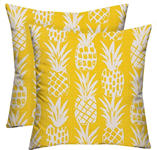 RSH D cor Set of 2 Decorative Indoor Outdoor Throw Toss Pillows Choose Size and Fabric Color