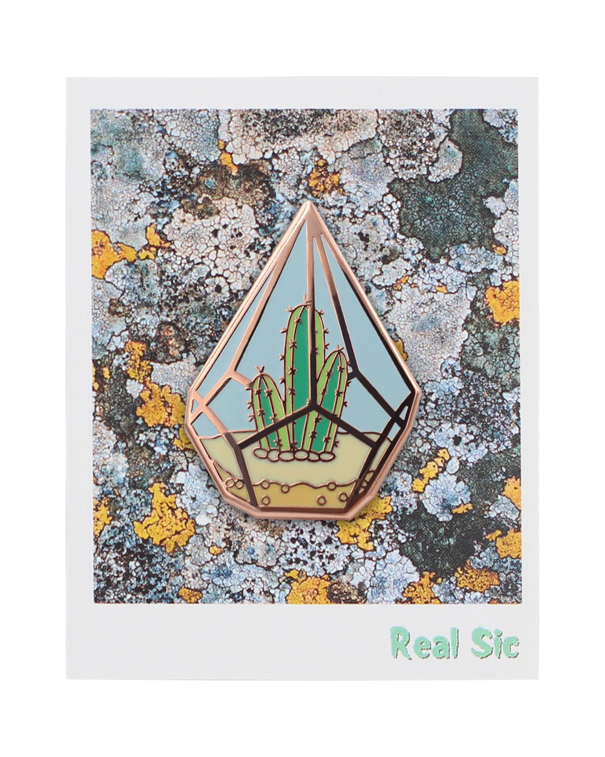 Real Sic Cactus Enamel Pin by Cute Cactus in Geometric Terrarium Lapel Pin - Premium Unisex Collection by Real Sic (Image #6)