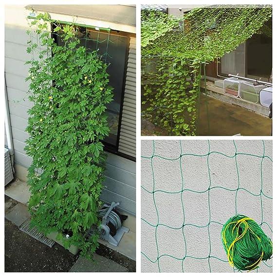 JOYOOO 1.8 x 3.6 m Nylon Plant Support & Trellis Netting for Pea ...