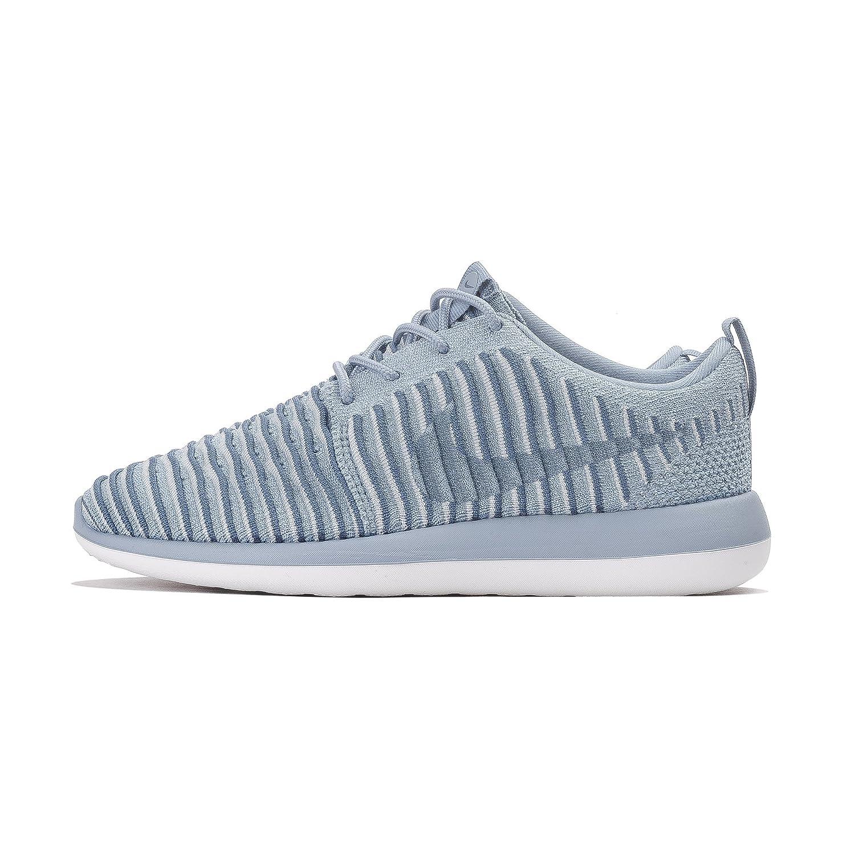Nike 844929-400, Zapatillas de Trail Running para Mujer 40 EU|Azul (Blue Grey / Blue Grey-ocean Fog)