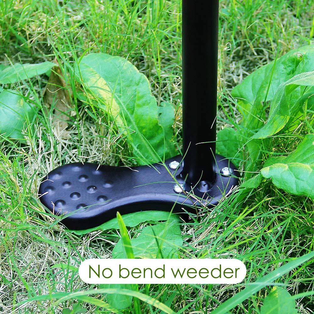 Worth Garden Azadillas para jardiner/ía de Acero Inoxidable 37.5cm Extractor de Malas Hierbas Herramienta jardiner/ía
