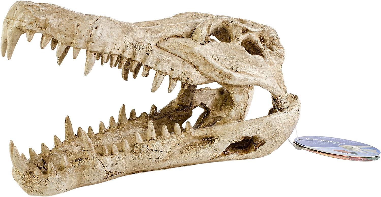 Pen Plax RR1065 Crocodile Skull Animal Resin Ornament for Fish Tanks