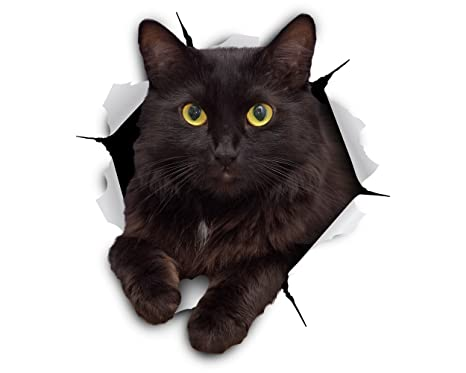 Winston & Bear Stickers de gato 3D gato negro Cheeky - Pack 2 - adhesivo para