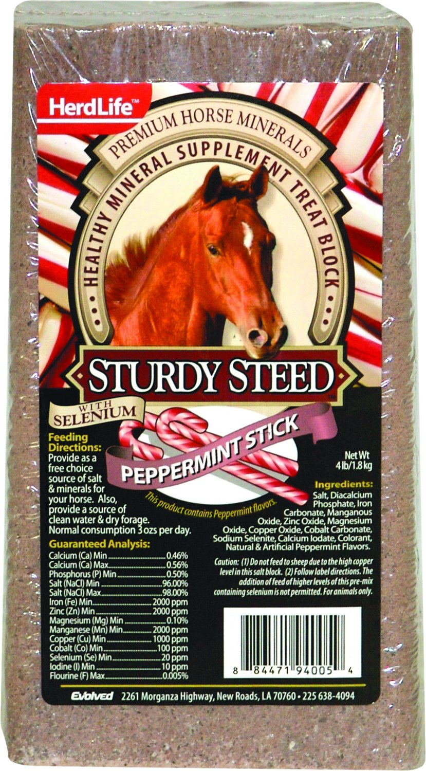 EVOLVED Sturdy Steed Horse Block 539559 4LBS. GB Industrial Direct 94005