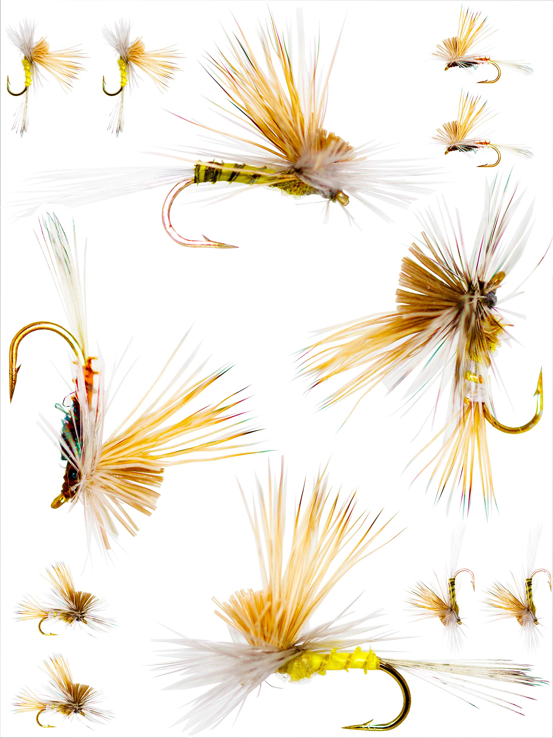 Outdoor Planet 12 Tilt Wing Dun Caddis Mayfly Dry Flies for Trout Fly Fishing Flies Lure Assortment by Outdoor Planet