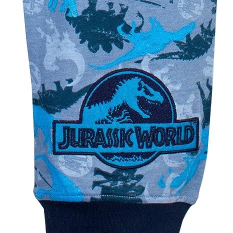Jurassic World - Pijama para Niños - Jurassic World: Amazon.es: Ropa y accesorios