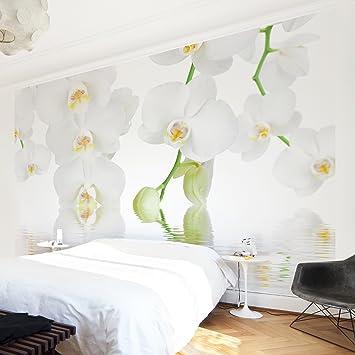 Vliestapete – Top Orchideen Wallpapers – Wandbild Landschaft Format ...