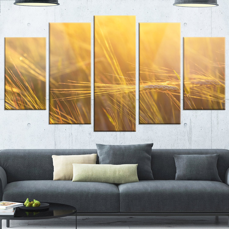 Large Landscape Glossy Metal Wall Art 32 H/x/60 W/x/1 D 5PD Orange Designart Wheat Field Close-up at Sunset