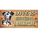 Birthday Occasion Dalmatian Wooden Funny Sign Wall Plaque Gift Present Love is Being Owned By A Dalmation
