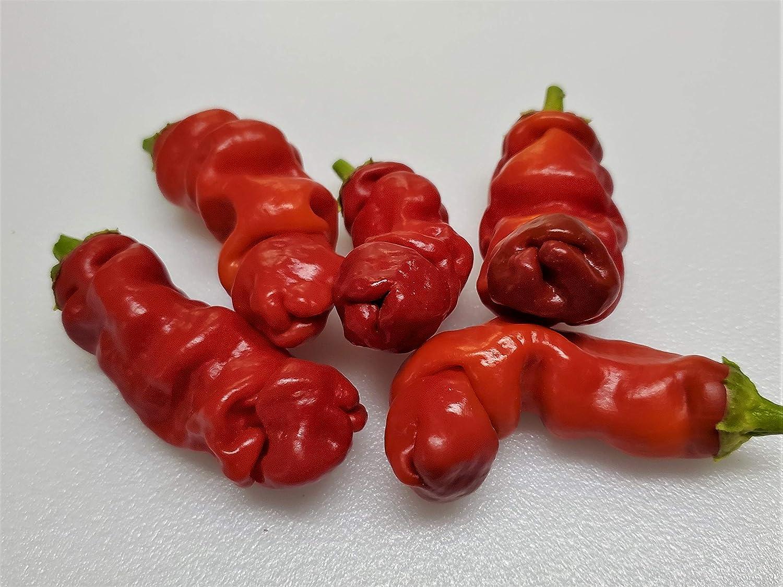 Amazon Com Peter Pepper Red Hot Pepper 10 Seeds Chile Pepper Plants Garden Outdoor