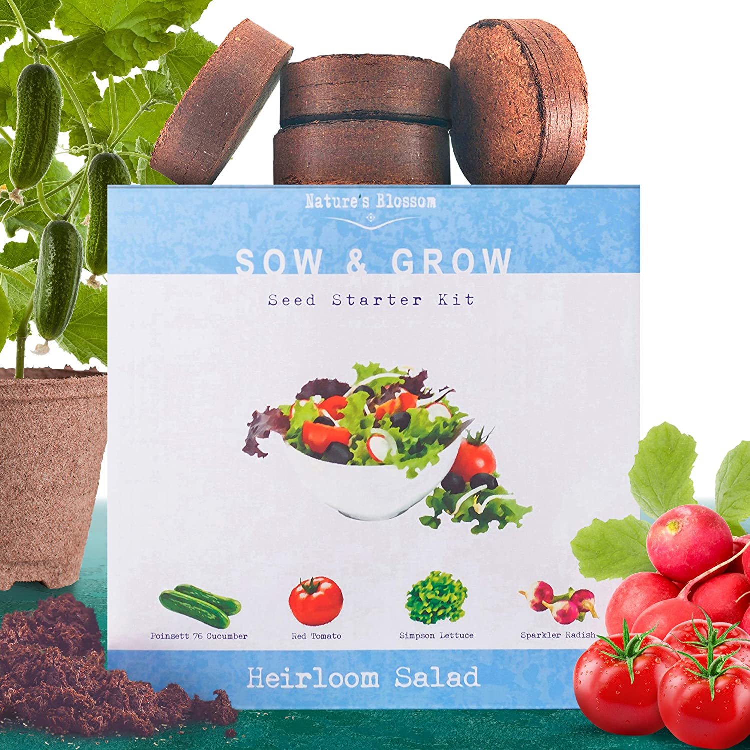 Heirloom Salad Seed Starter Kit - Grow 4 Organic Vegetables from Seeds  Set  Contains Growing Pots, Soil, Plant Labels & Guide  Fun Garden Gift for Men
