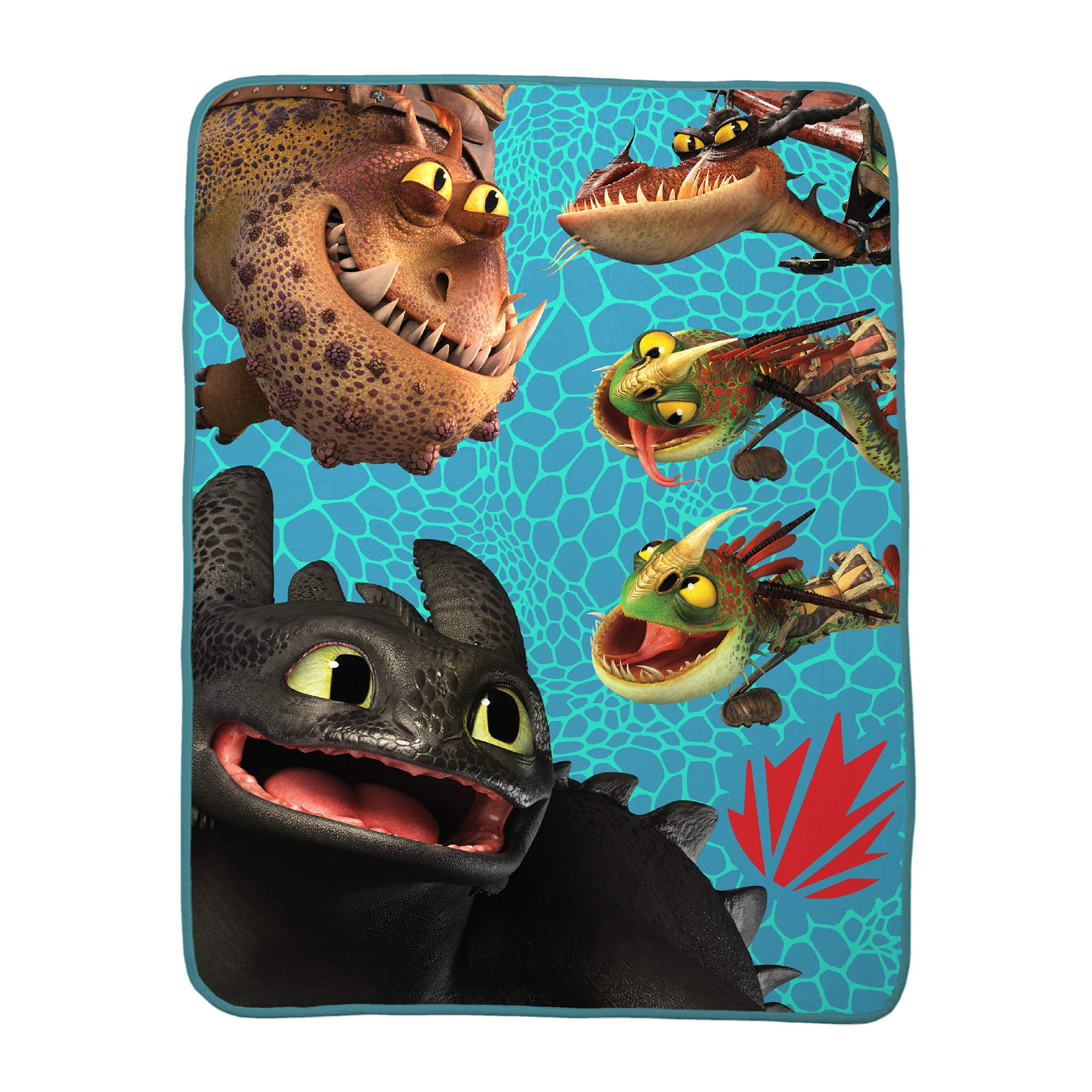 Franco Kids Bedding Super Soft Plush Throw, 46'' x 60'', How to How to Train Your Dragon by Franco (Image #1)