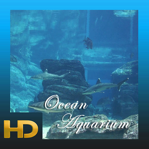 Ocean Aquarium HD (Best Hd Wallpapers For Android)