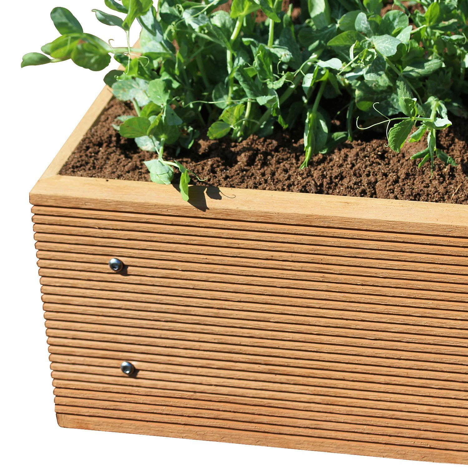 ECOgardener Premium Raised Bed Garden Planter Box 2' x 4' – The most beautiful elevated planter that will not crack, split, warp or break. Easy setup and maintenance free design. by ECOgardener