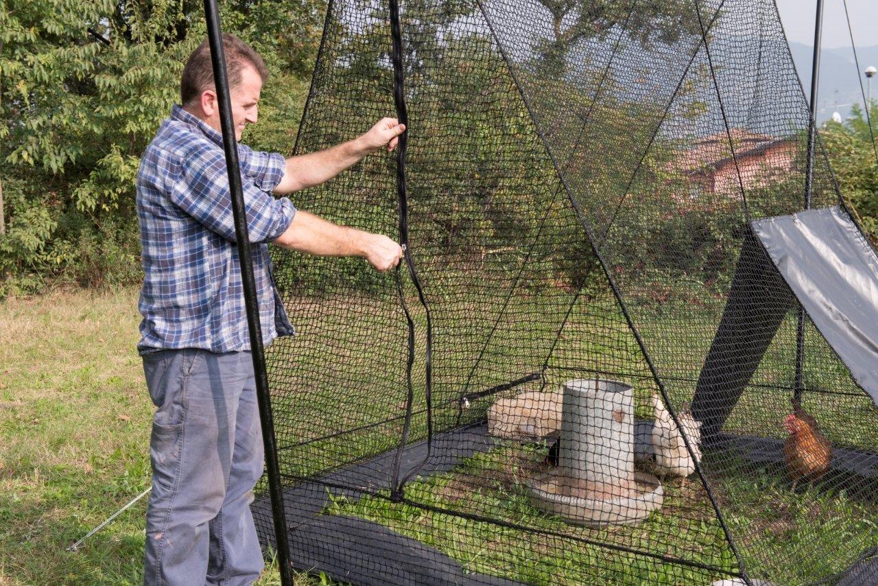Gallinero de red Voliera a cabaña para gallinas Gallinas Conejos ...