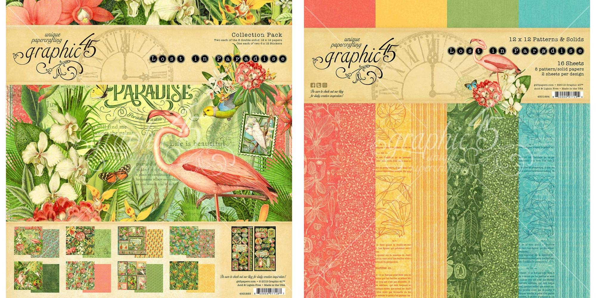 Graphic 45 - Lost in Paradise Collection Pack and Patterns & Solids Paper Pad - 12 x 12 Inch Decorative Papers - 2 Items