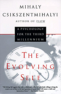 Flow the psychology of optimal experience harper perennial modern the evolving self psychology for the third millennium a harper perennial modern classics fandeluxe Choice Image